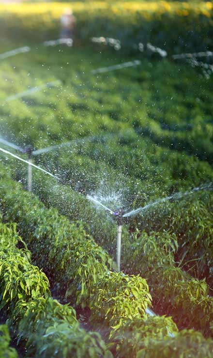 U.S. Green Pros a division of AKA Landscapes Irrigation System Repair