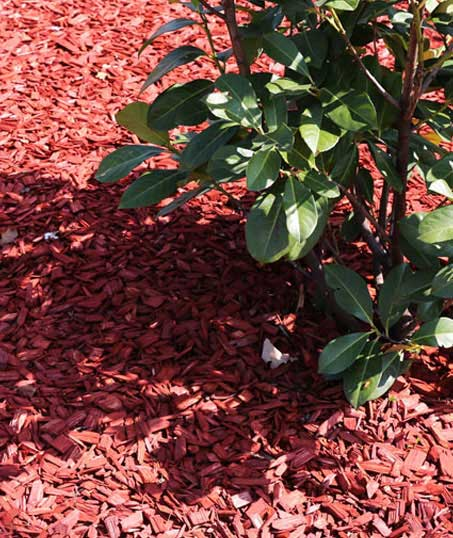 U.S. Green Pros a division of AKA Landscapes Mulching